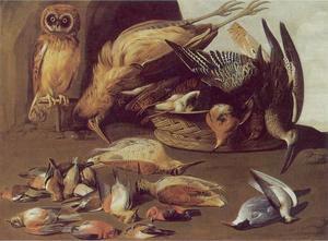Stilleven van dode vogels met een levende uil