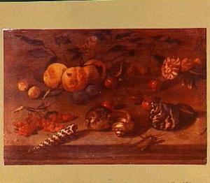 Stilleven met losse vruchten, schelpen, insekten en een anjer
