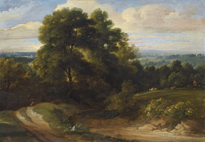 Bebost heuvellandschap met wandelaars