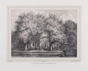 Twee rijen bomen met doorkijk naar Stadwijk bij Voorschoten