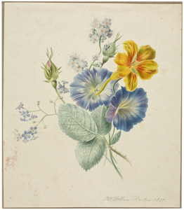 Tuiltje bloemen