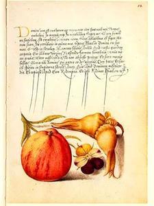 Driekleurig viooltje, appel en hazelnoot