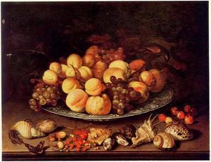 Vruchtenstilleven met kaketoe, schelpen en een hagedis