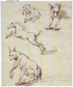 Twee vossen, springend paard en een liggend schaap