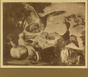 Havik valt kippen en eend aan; rechts twee konijnen