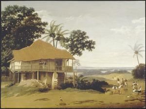 Brzailiaans landschap met huis