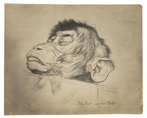 Dode aap