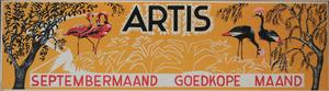 Artis-Septembermaand-Tram-Affiche: twee Flamingo's en twee Kroonkraanvagels.