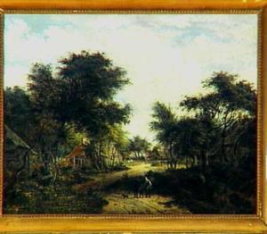 Boslandschap met enkele huizen aan een zandweg