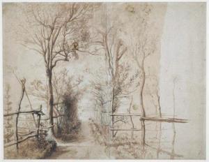 Studie van een pad doorheen een boomgaard