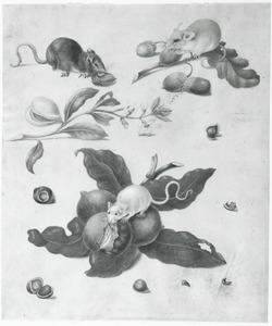 Drie muizen, walnoten, amandelen, hazelnoten en eikels