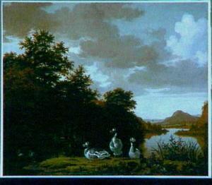 Boslandschap met ganzen op de oever van een meer