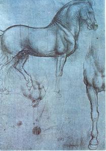 Paard met lijnen voor maten of assen, studie voor het Sforza monument