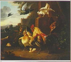 Pluimvee bedreigd door een roofvogel