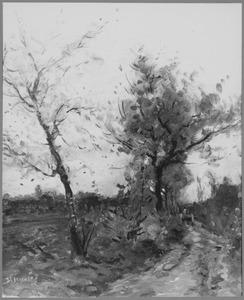 Bomen in een herfstlandschap