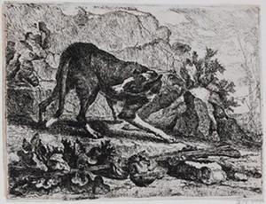 Jachthond in een landschap