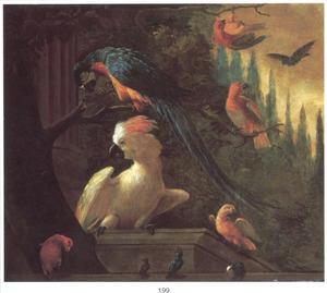 Een kaketoe en andere papegaaien in een parklandschap