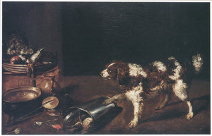 Dreigende kat en hond temidden van keukengerei