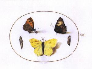 Drie vlinders en twee poppen