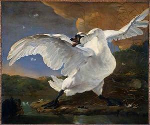 Bedreigde zwaan; later opgevat als allegorie op Johan de Witt