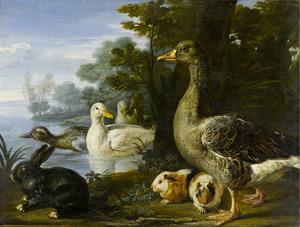 Eenden, ganzen, een konijn en marmotten in een waterrijk landschap