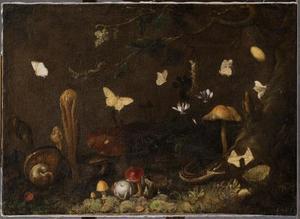 Bosstilleven met paddestoelen en vlinders