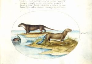 Nerts, otter [?] met een vis en een fabeldier