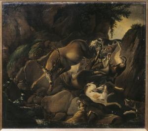 Honden een hert achtervolgend in een rotsige rivierbedding