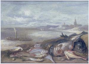 Vis op de kust