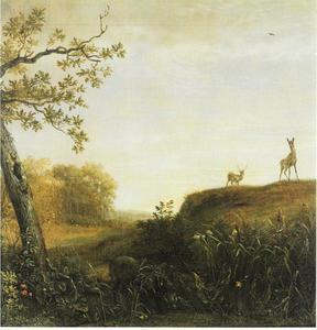 Zwijn en herten in een landschap