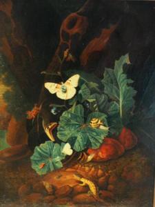 Bosstilleven met planten, reptielen en insecten