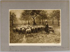 Herderin met kudde schapen in een boomgaard