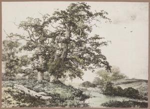 Landschap met eikenbomen bij een beekje