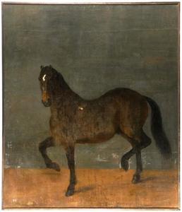 Portret van het paard 'Brandklipparen'