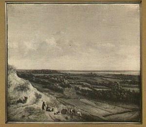 Gezicht op Haarlem vanaf de duinen gezien