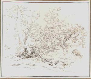 Loofbomen aan de waterkant