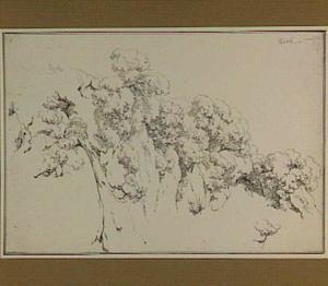 Rotswand met bomen in de omgeving van Tivoli