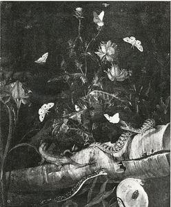 Stilleven met slaapbol, distel, vlinders, slangen en een hagedis