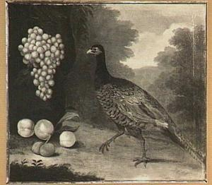 Fazant met druiven en perziken in een landschap