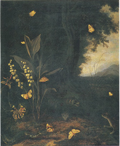 Bosgrond met lelietje-van-dalen met vlinders, een slang en twee marters