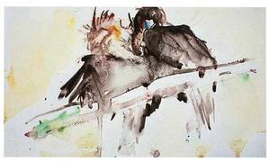 Twee jaarvogels