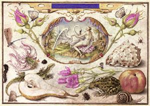Leda en de zwaan, in een ovaal omringd door flora en fauna