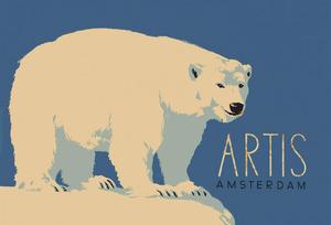 Omslag van de Artisgids met ijsbeer