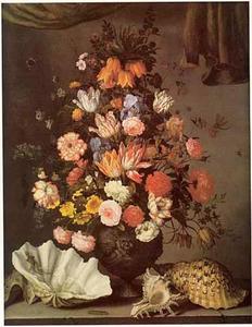Stilleven van bloemen met keizerskroon in top, in een vaas, en schelpen op een stenen tafel, onder een gordijn
