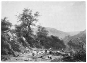 Landschap in de omstreken van Baden Baden