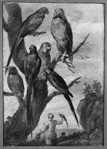 Een studie van papegaaien met een valkenier op de achtergrond