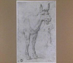 Balkende ezel en een springende hond