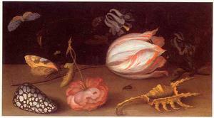 Bloemen, insekten en twee schelpen op een stenen plint