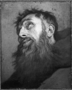 De H. Franciscus van Assisi