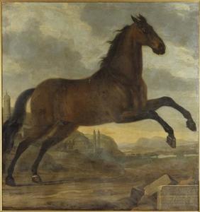 Sultan, rijpaard van Karel XI